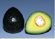 utilisé comme légume, ce fruit est kaki à l'extérieur, vert à l'intérieur